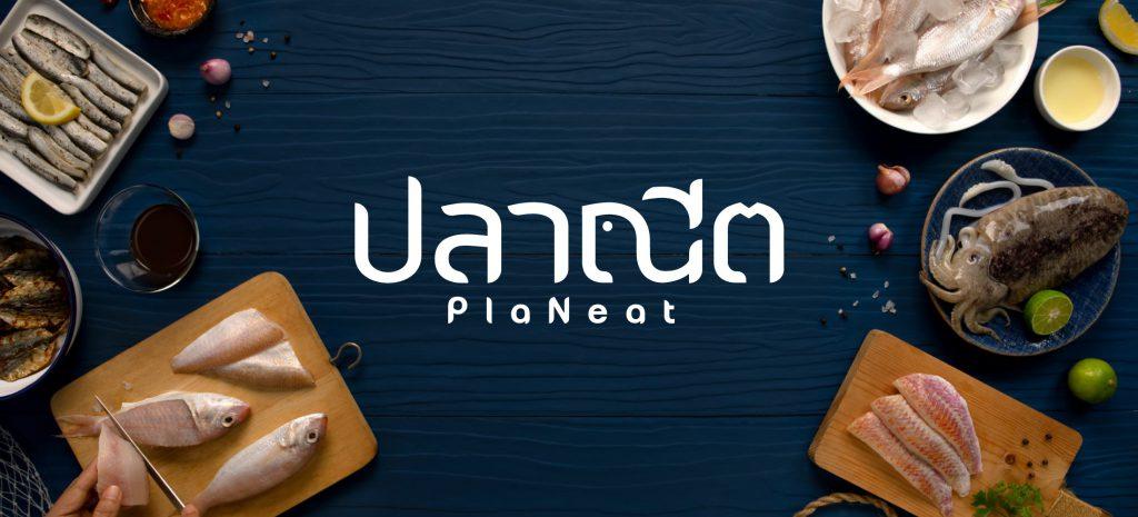 YindeeDesign x PlaNeat